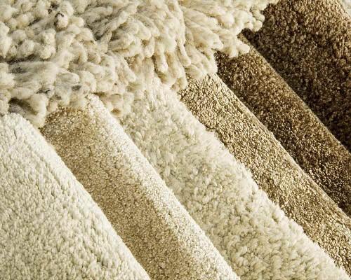 Carpet Selection Detail