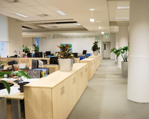 Carpeted Office